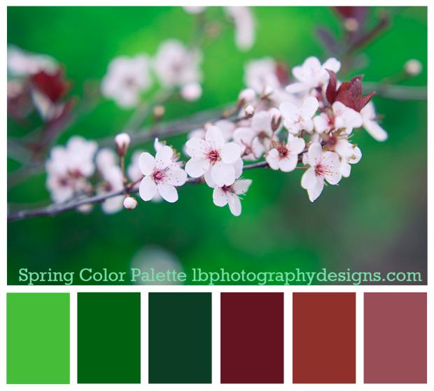 Spring Color Palette Sample